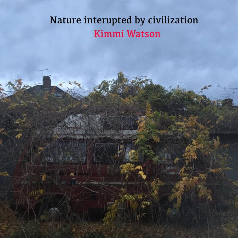 nature_interupted_by_civilization_phoro_by_kimmiw_watson